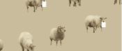 sheep 230mm