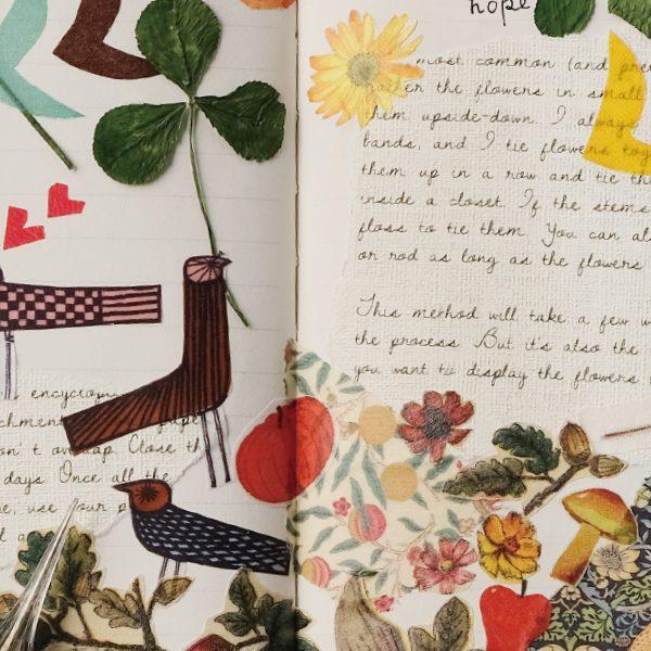 Botanical × mt ex picture book, an artist series